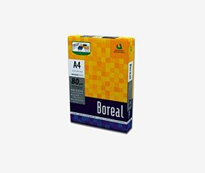RESMA BOREAL 80 GRS