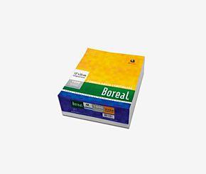 FORMULARIO BOREAL CONTINUO 12x25 70 GRS PLECA 6